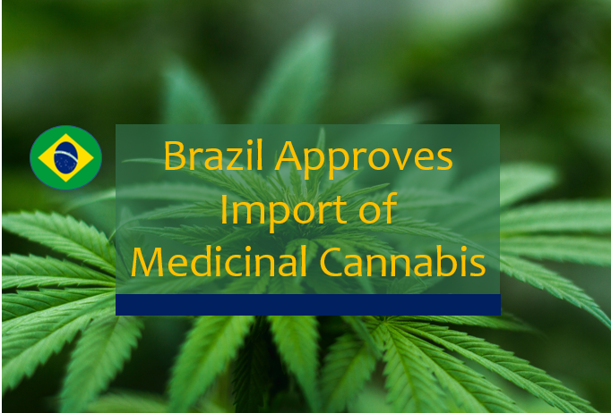 brazil approves importation of medicinal Cannabis